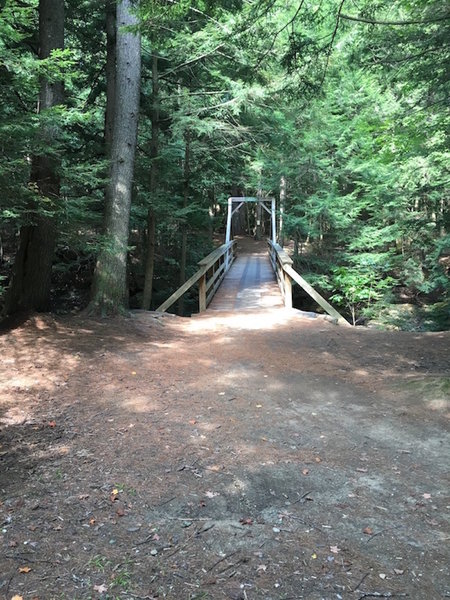 Townsend Bridge - all of the trails are on the other side!