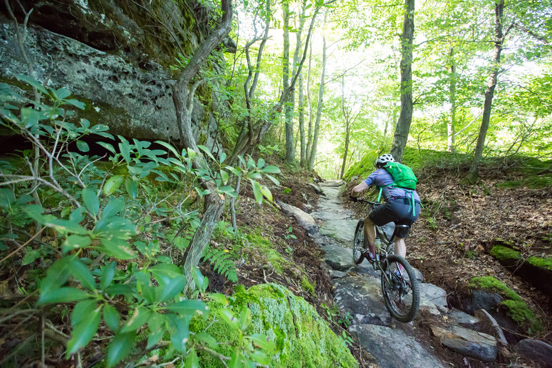 Climbing up to Coal Knob on G Trail. Jakes Rocks Trail System. Warren, PA.