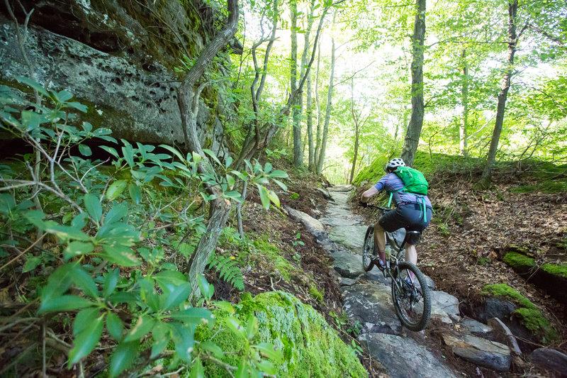 Climbing up to Coal Knob on G Trail. Jakes Rocks Trail System. Warren, PA.