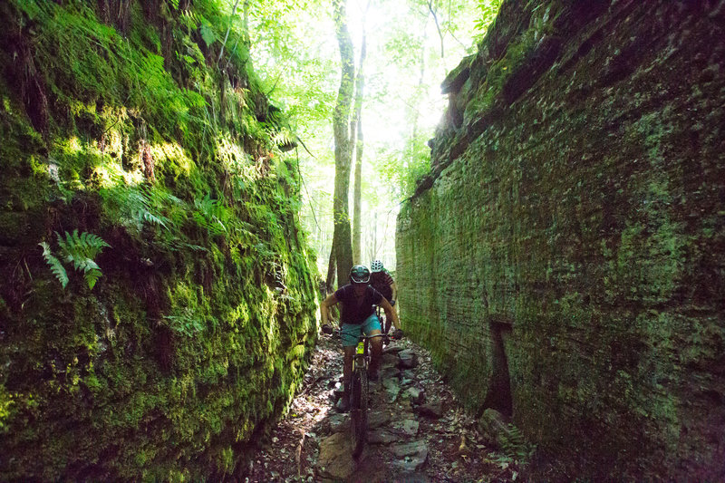 Pedaling through house-sized boulders is one of the coolest features of the Jakes Rocks Trail System.