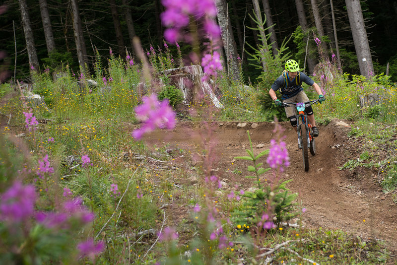 Jason Ding rides the berms in the clearcut of the Cold Creek Trail.