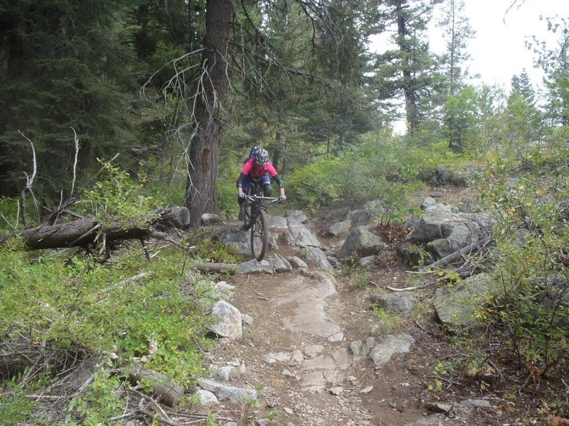 Another of the short rocky sections of trail.