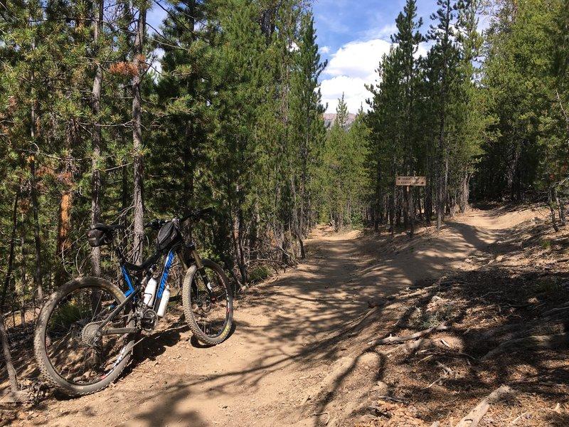 Lodge Loop Mountain Bike Trail, Sun Valley, Idaho