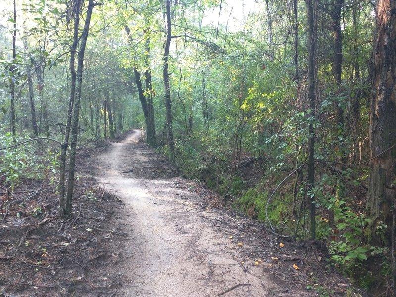 Nice trail at Beaver Creek Trails.