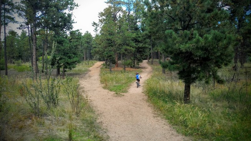 Wide trails and flowing hills are perfect for learning riders.