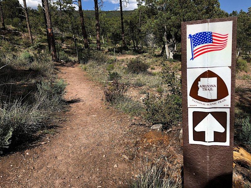 The Arizona Trail.
