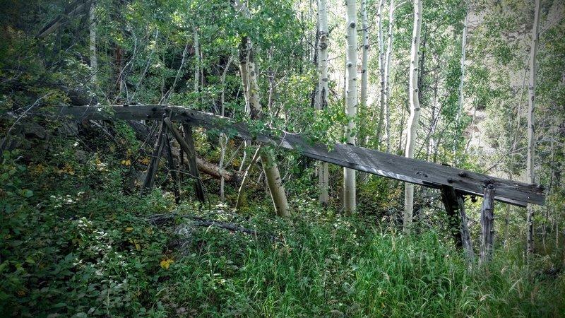 Forgotten mining construction lies hidden in the aspens.