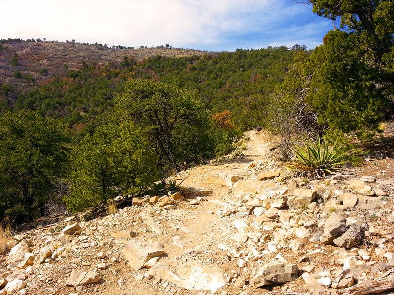 Rock ledges galore await you on Birdhouse Ridge which is best ridden downhill.