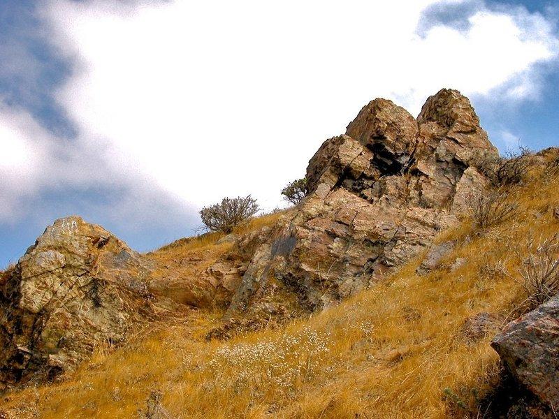 Coyote Hills rocks.