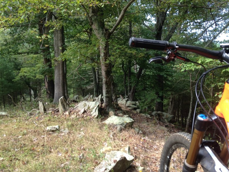 When you see a pretty view to your left, then look out for one nasty rock garden coming up on the trail. Downhill!