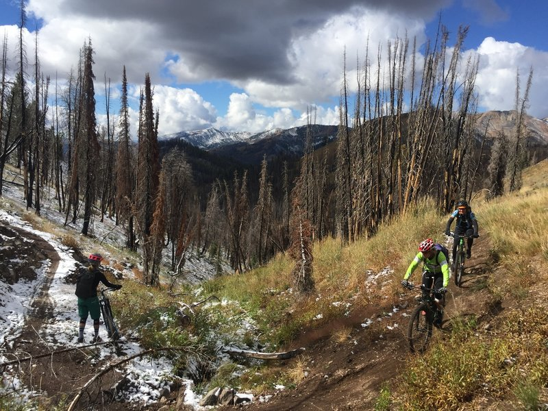 All kinds of trail conditions this day!  Early September 2016.