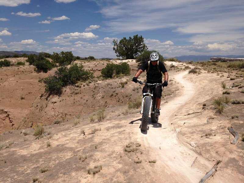 Rolling among the delicate cryptobiotic soils @ Final Frontier of White Mesa (Ridge) in New Mexico.  Camera: Susan Brayn.