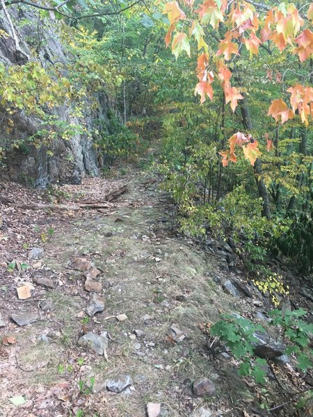 Another section of rocky outcropping on Blockstand Creek Trail.