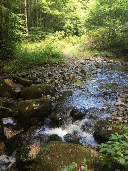 Stream crossing on Headwaters Trail.
