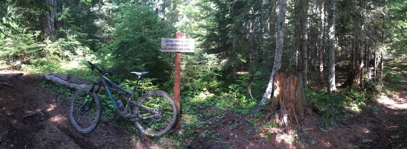 Trail junction marker from the gravel road. Let the fun begin as you head down Alpine!