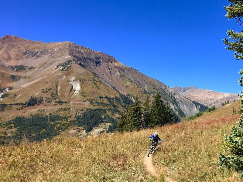 401 trail in Crested Butte in September