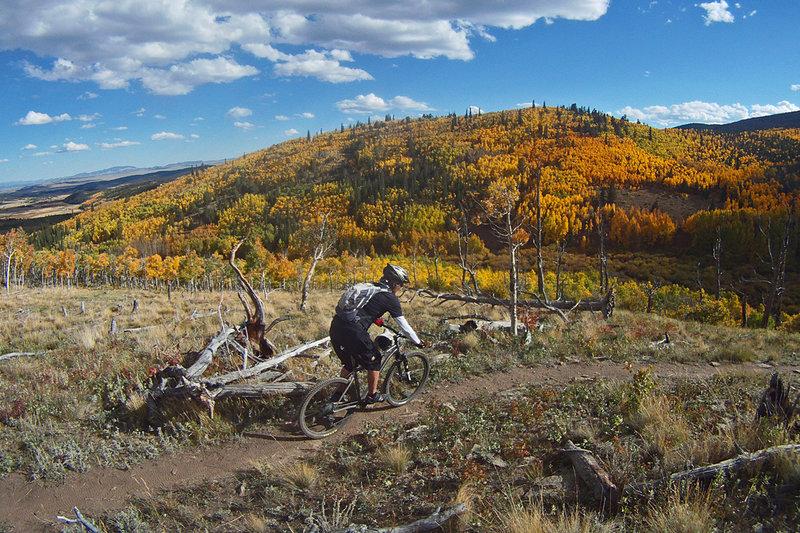 Sheep Creek fall color fest