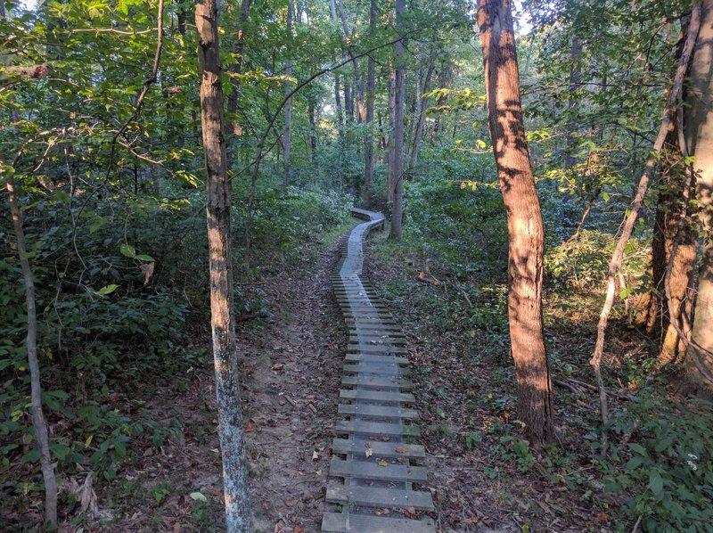 A fun challenging ladder bridge!