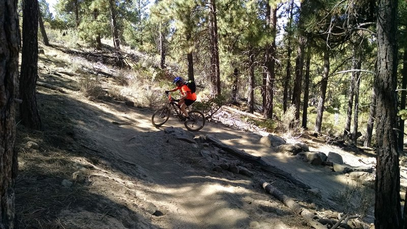 A little switchback action.