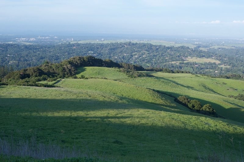 The view of the preserve and the Stanford Dish beyond from the Spring Ridge Trail.