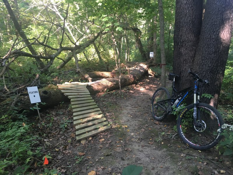 Most of these trails are a novice rating; however, the builders have left in a few features along the way.