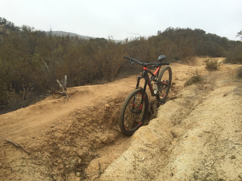 Trenchy DH section with narrow options.