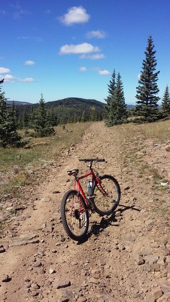 Rode my old school to the top; this rocky road is the final stretch