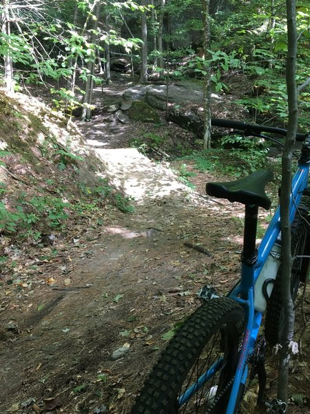 This is a pic looking up at a technical section which I rode down.