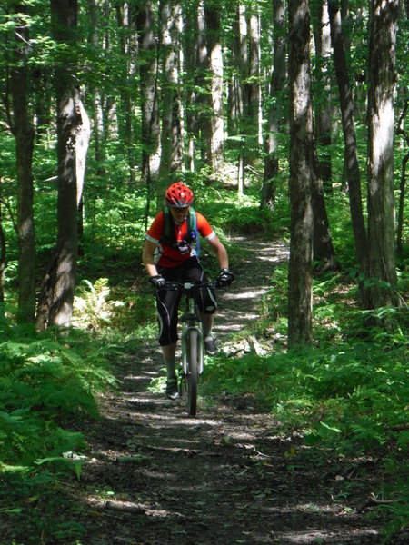 Stripmine Trail is one of the easiest trails as it heads out of the stripmine area.
