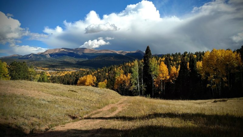 Autumn views towards the Crags and Pike's Peak along Cahill Pond Trail.