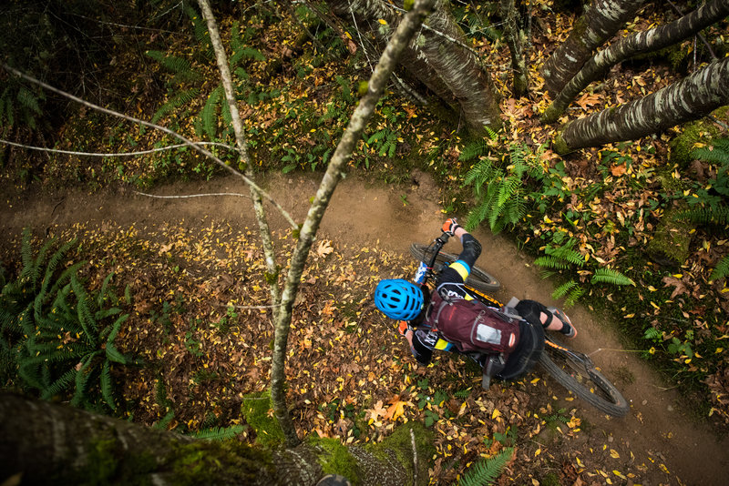 Fall riding on One Liner near Port Angeles, WA.