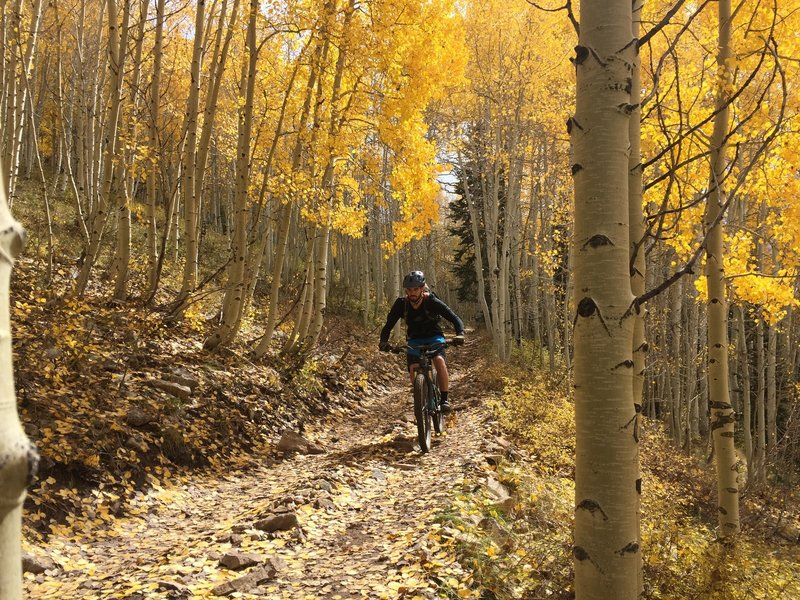 The aspens are beautiful on this trail.