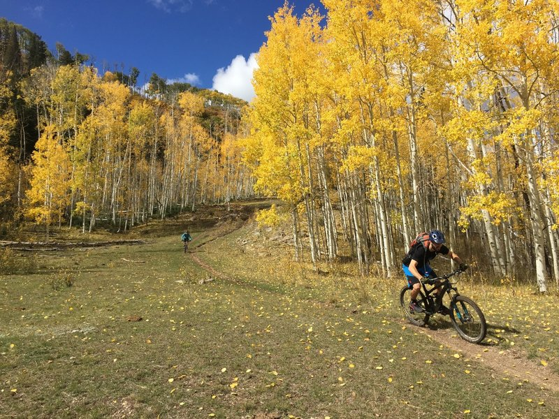 There are at least a couple places where you can go fast on this trail.