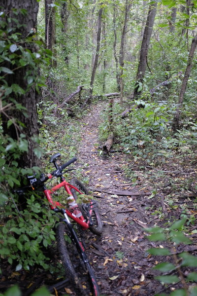 Steep climb, impossible with wet terrain.