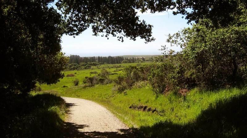 Wilder Ranch State Park.