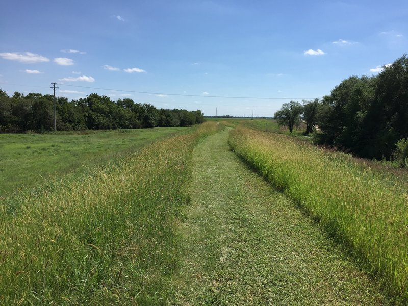 This section of trail is not paved and I have no idea how often it's mowed...