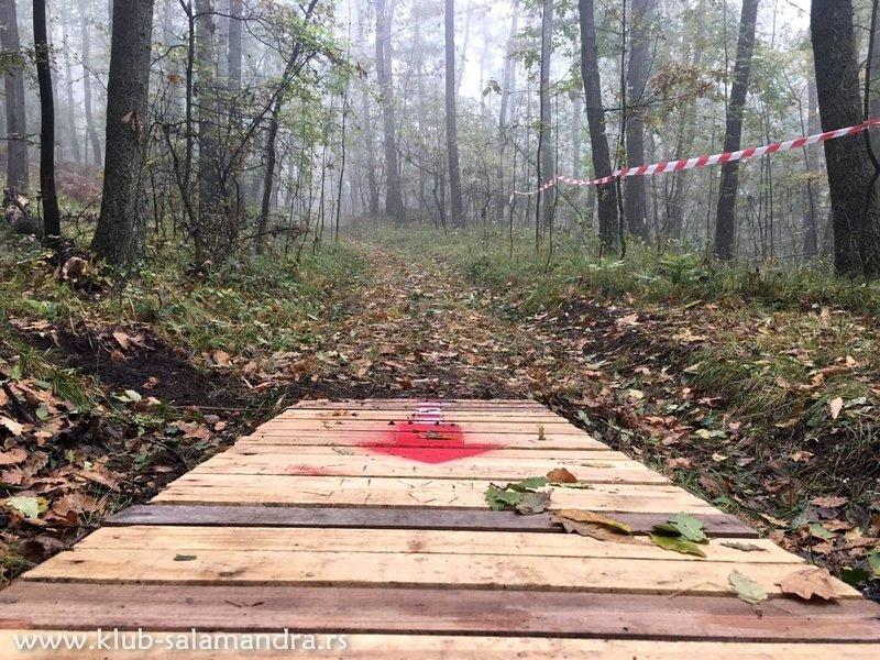 MTB trail Baberijus.