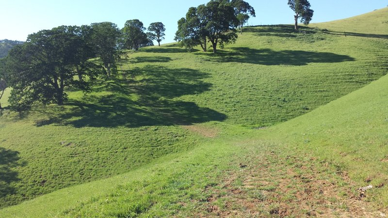 Fox Trail ends with steep climb to fence dead-end.