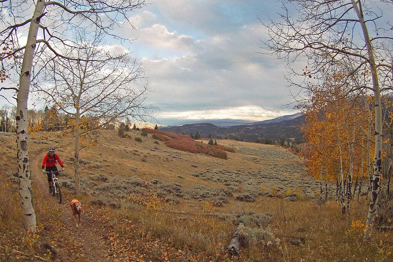 Rainbow Trail on a fall evening.