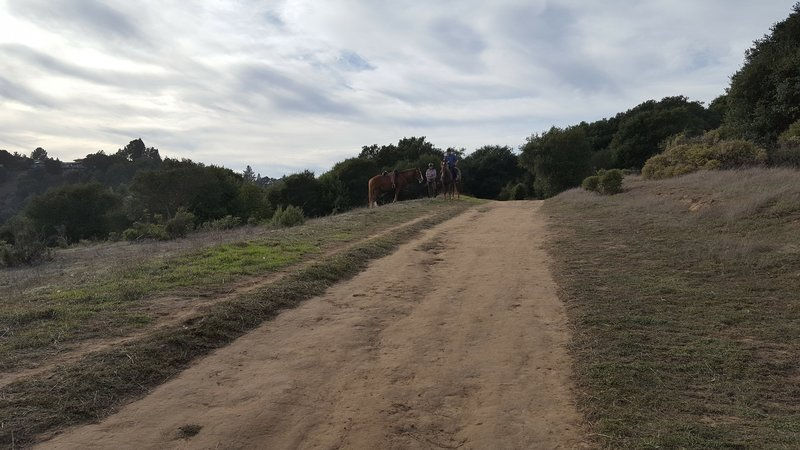 Top of MacDonald Trail.