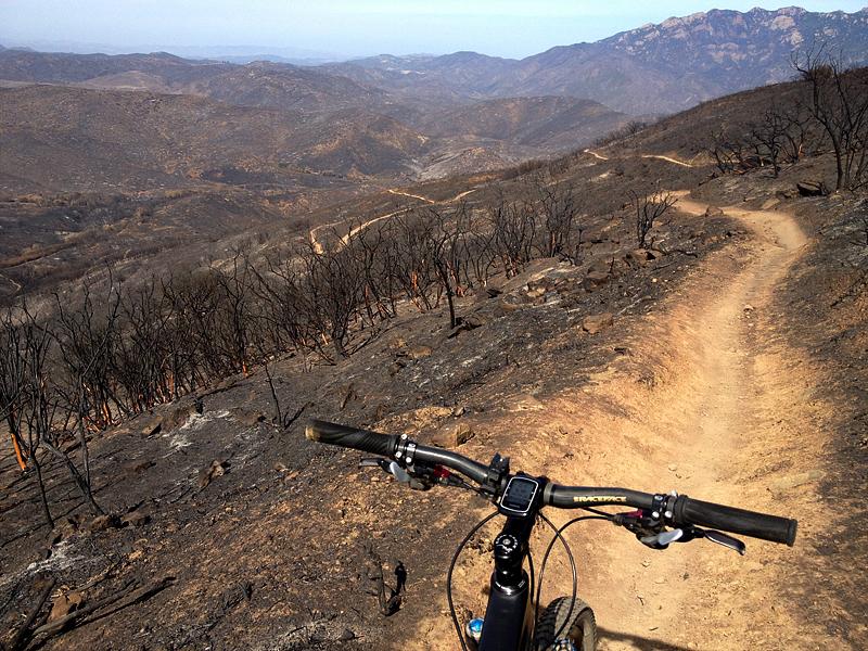 Burn area on Guadalasca Trail.