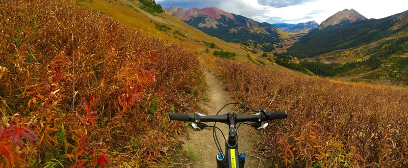 High on Trail 401 in the early fall 2016.