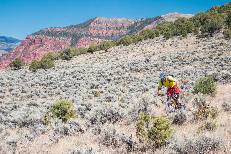The Boneyard Trail in Eagle is a great climb... and descent!