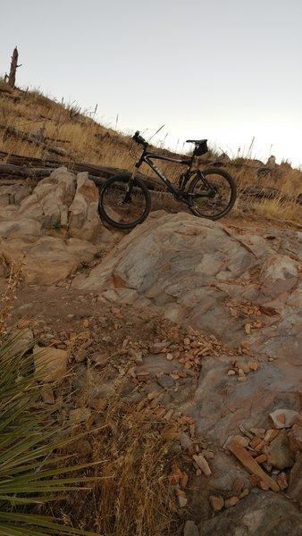 Bobcat Ridge.