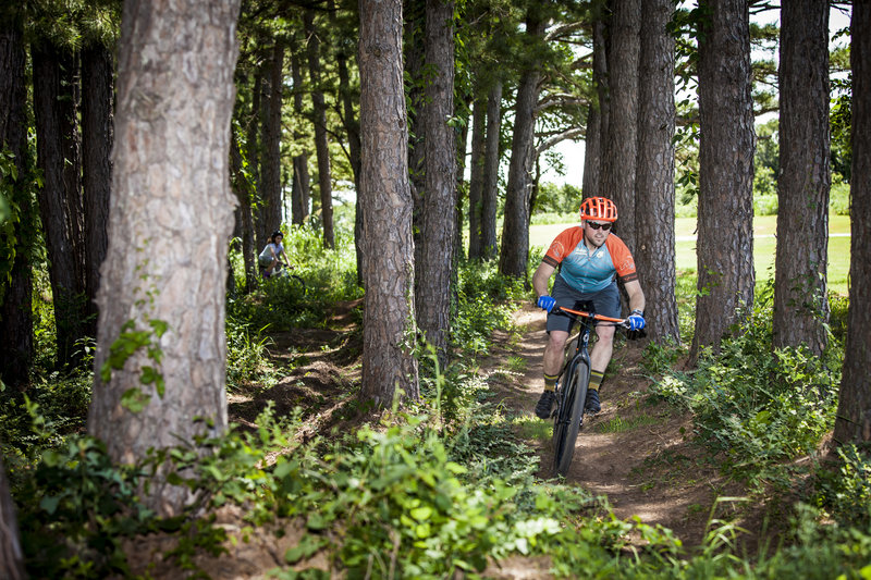 Through the pines on the dual slalom at Lake Carl Blackwell.