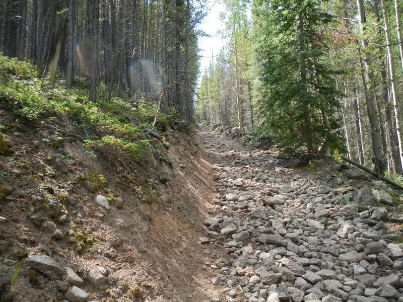 This is what you'll mostly face until you reach Sawmill Park, near section 16 of the Colorado Trail.
