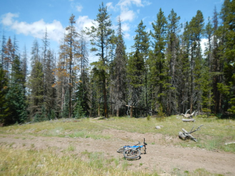 The brutal climb ends in the trees behind the faint doubletrack. Now Road 578 becomes a mellow, wide dirt road.
