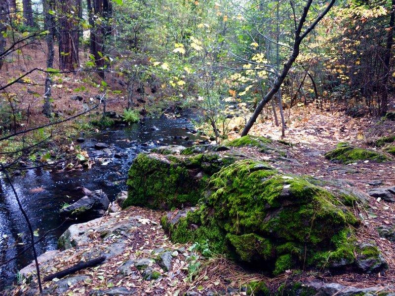 Creek ride.