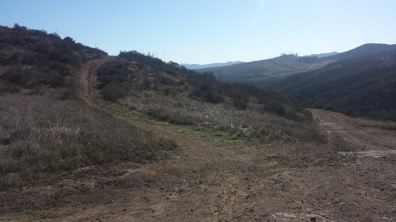Peninsula Trail