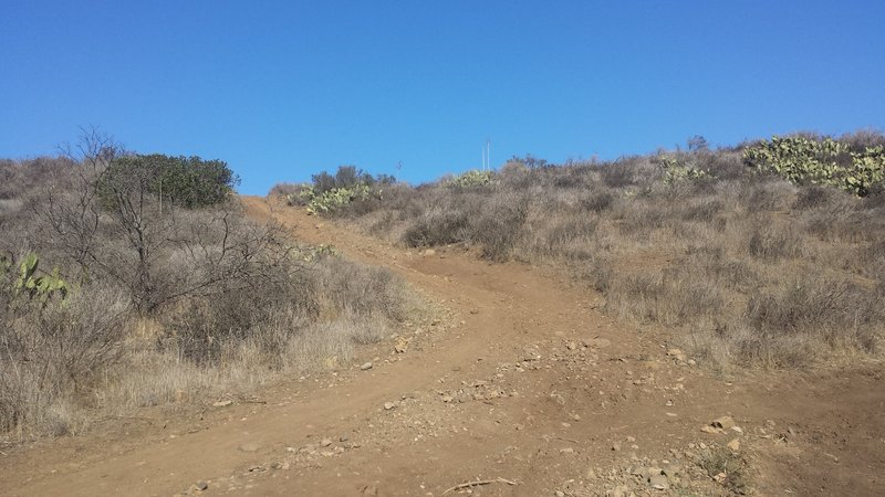The steep section on the peninsula trail